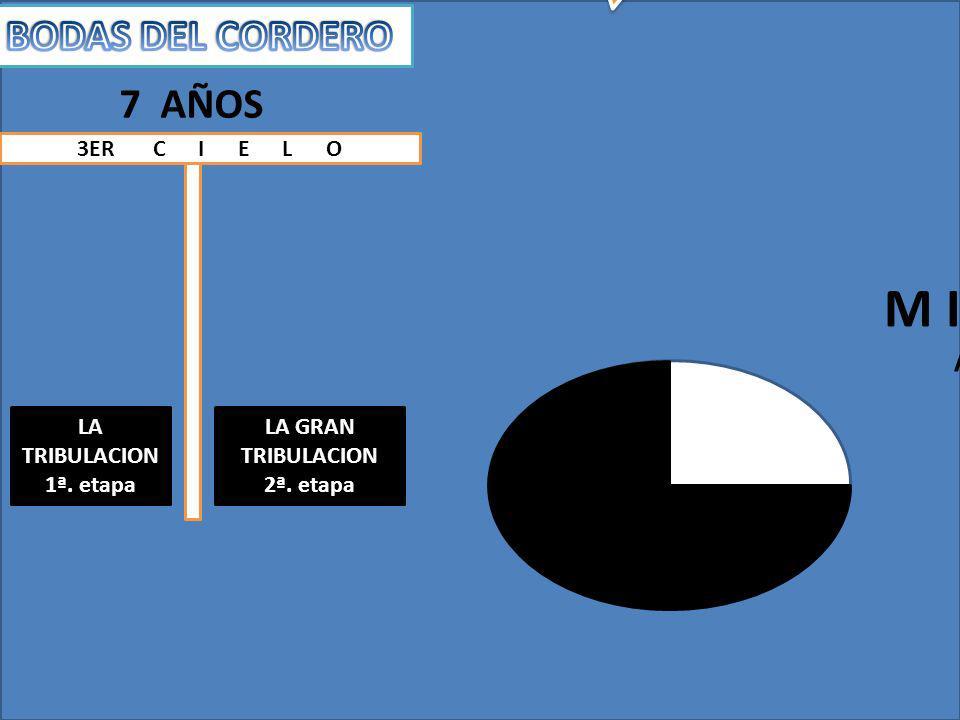 LA TRIBULACION 1ª. Etapa 3 años 1/2 LA GRAN TRIBULACION 2ª. Etapa 3 años ½ Dan. 9:27, 11:31 12:11 El periodo total de la tribulación es de 7 años El p