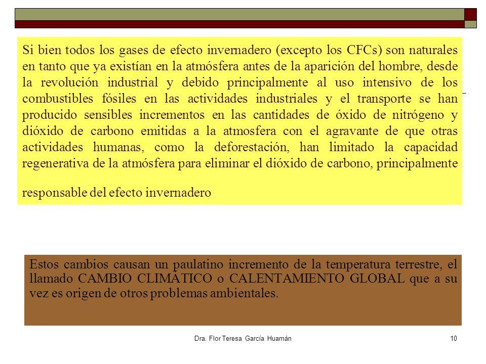Dra. Flor Teresa García Huamán Si bien todos los gases de efecto invernadero (excepto los CFCs) son naturales en tanto que ya existían en la atmósfera