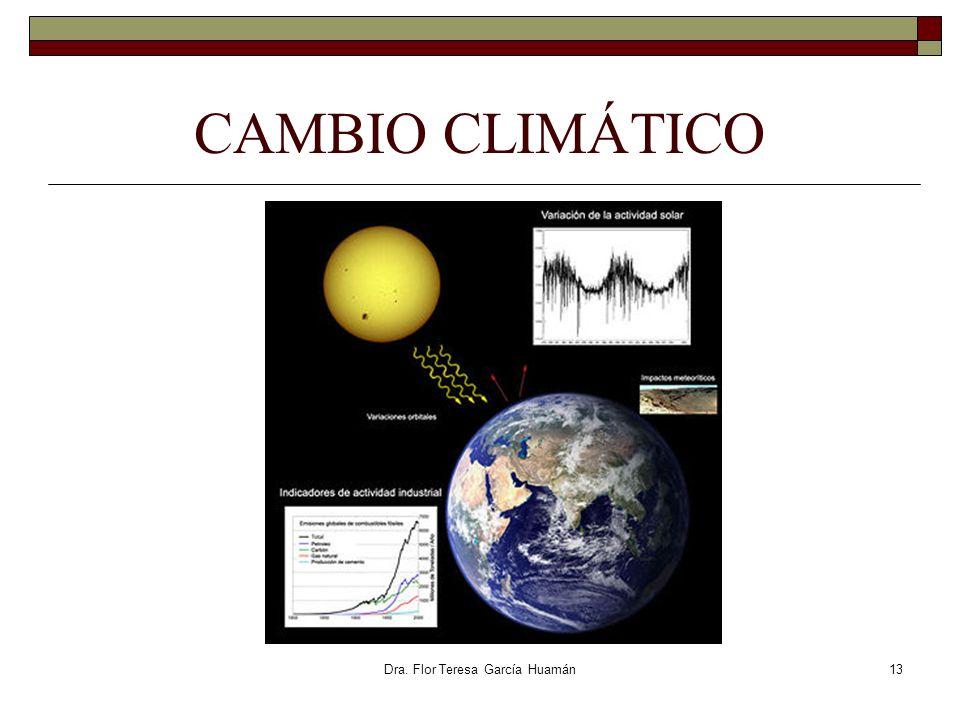 Dra. Flor Teresa García Huamán CAMBIO CLIMÁTICO 13