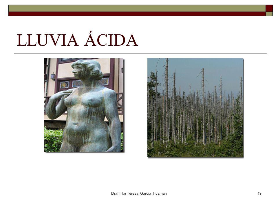 Dra. Flor Teresa García Huamán LLUVIA ÁCIDA 19