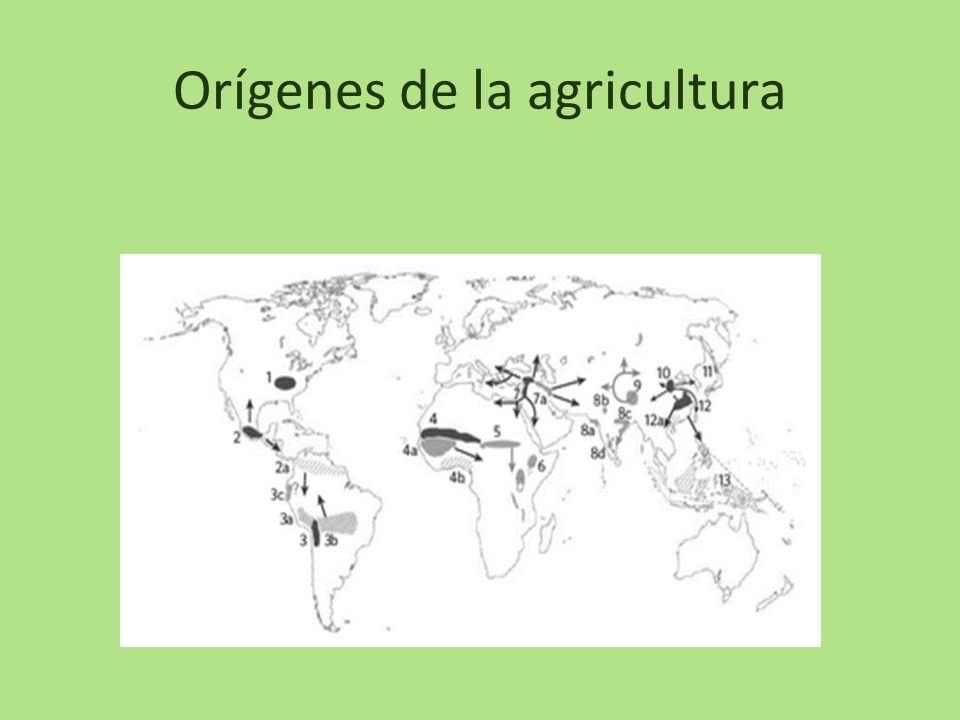 Orígenes de la agricultura