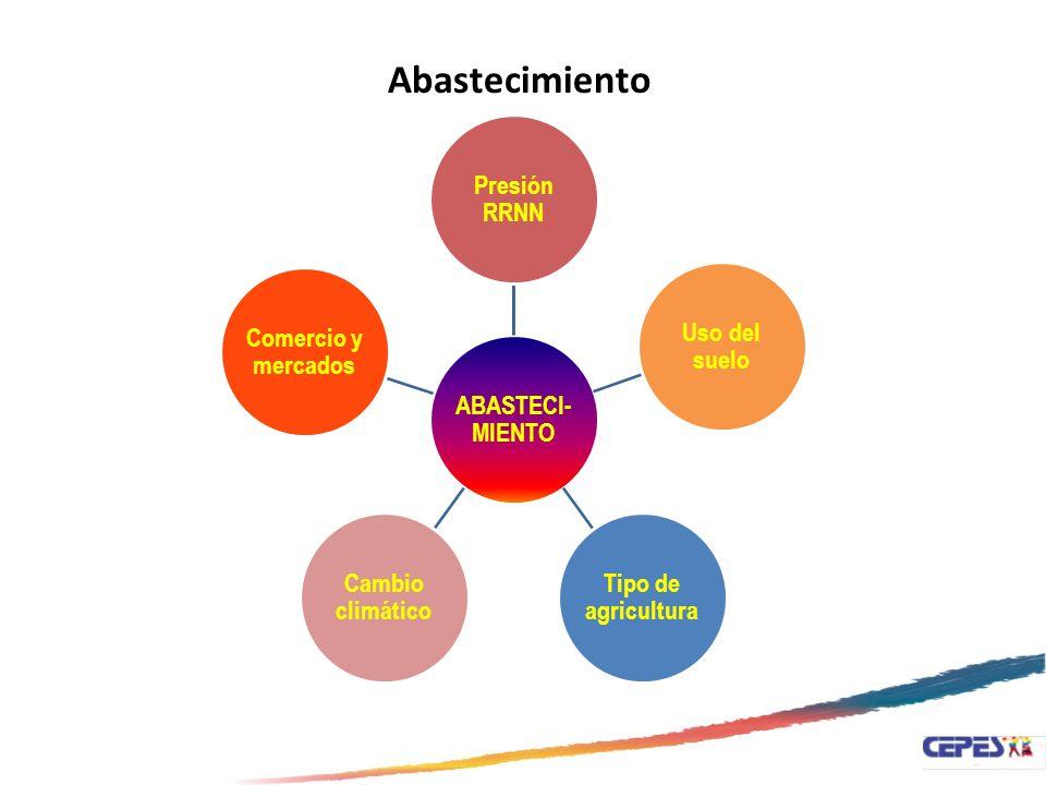 ABASTECI- MIENTO Presión RRNN Uso del suelo Tipo de agricultura Cambio climático Comercio y mercados Abastecimiento