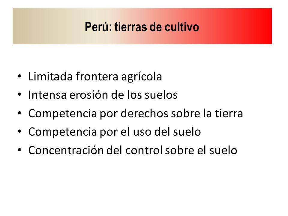Perú: tierras de cultivo Limitada frontera agrícola Intensa erosión de los suelos Competencia por derechos sobre la tierra Competencia por el uso del