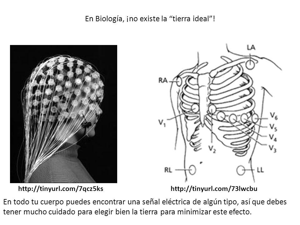 En Biología, ¡no existe la tierra ideal! http://tinyurl.com/7qcz5kshttp://tinyurl.com/73lwcbu En todo tu cuerpo puedes encontrar una señal eléctrica d