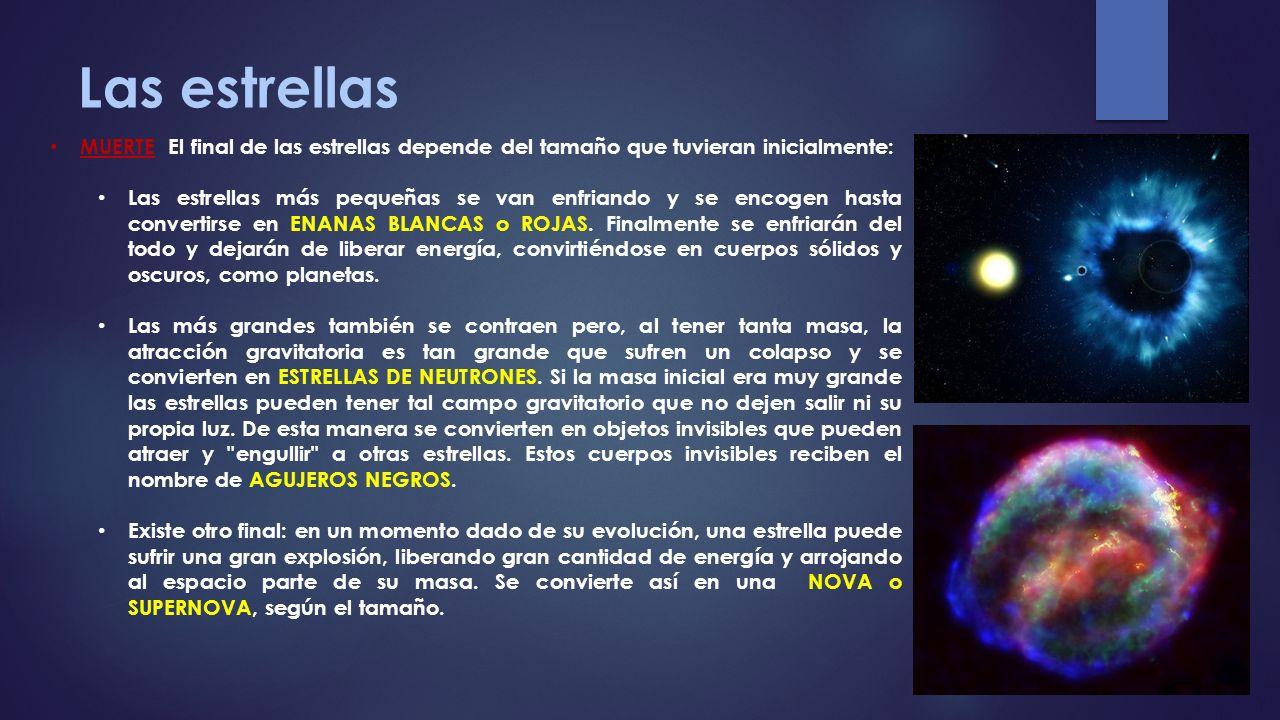 Las estrellas MUERTE El final de las estrellas depende del tamaño que tuvieran inicialmente: Las estrellas más pequeñas se van enfriando y se encogen