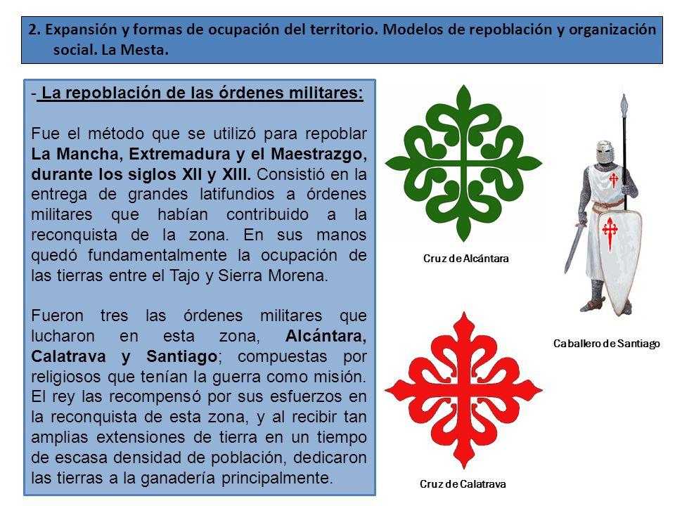 2. Expansión y formas de ocupación del territorio. Modelos de repoblación y organización social. La Mesta. - La repoblación de las órdenes militares: