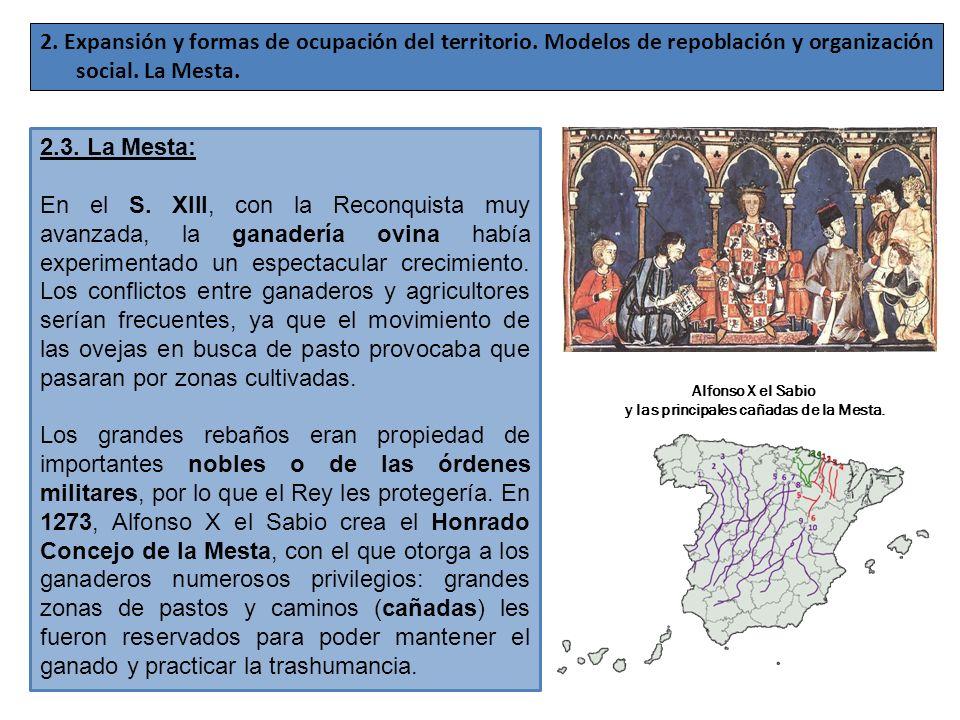 2. Expansión y formas de ocupación del territorio. Modelos de repoblación y organización social. La Mesta. 2.3. La Mesta: En el S. XIII, con la Reconq