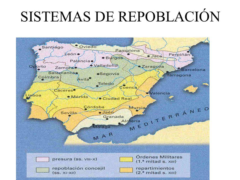 SISTEMAS DE REPOBLACIÓN
