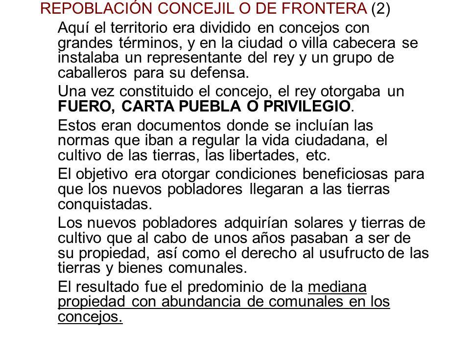 REPOBLACIÓN CONCEJIL O DE FRONTERA (2) Aquí el territorio era dividido en concejos con grandes términos, y en la ciudad o villa cabecera se instalaba