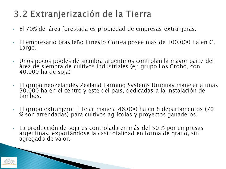 3.2 Extranjerización de la Tierra El 70% del área forestada es propiedad de empresas extranjeras. El empresario brasileño Ernesto Correa posee más de