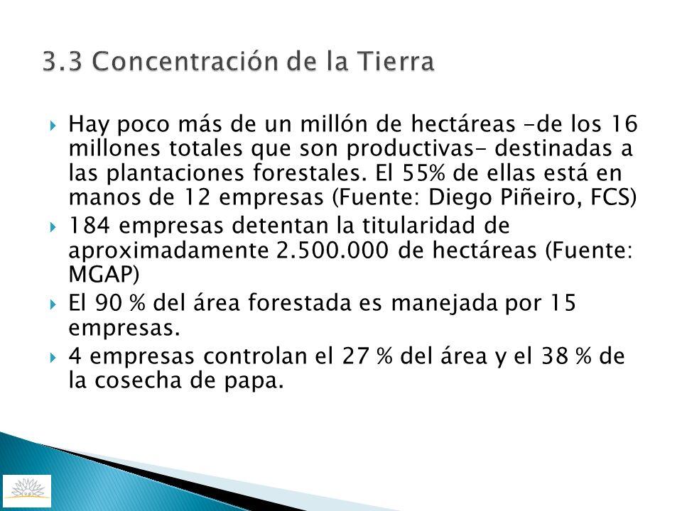 3.3 Concentración de la Tierra Hay poco más de un millón de hectáreas -de los 16 millones totales que son productivas- destinadas a las plantaciones f
