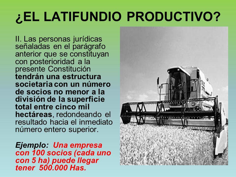 ¿EL LATIFUNDIO PRODUCTIVO.II.