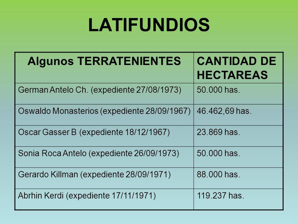 LATIFUNDIOS Algunos TERRATENIENTESCANTIDAD DE HECTAREAS German Antelo Ch. (expediente 27/08/1973)50.000 has. Oswaldo Monasterios (expediente 28/09/196