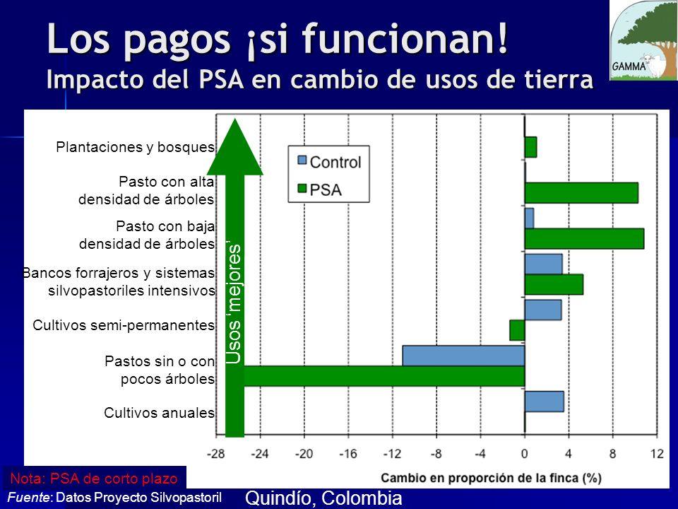 Los pagos ¡si funcionan! Impacto del PSA en cambio de usos de tierra Plantaciones y bosques Pasto con alta densidad de árboles Pasto con baja densidad