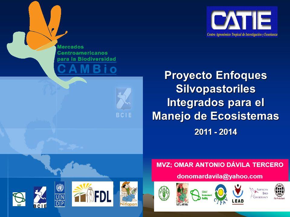 Proyecto Enfoques Silvopastoriles Integrados para el Manejo de Ecosistemas 2011 - 2014 MVZ; OMAR ANTONIO DÁVILA TERCERO donomardavila@yahoo.com