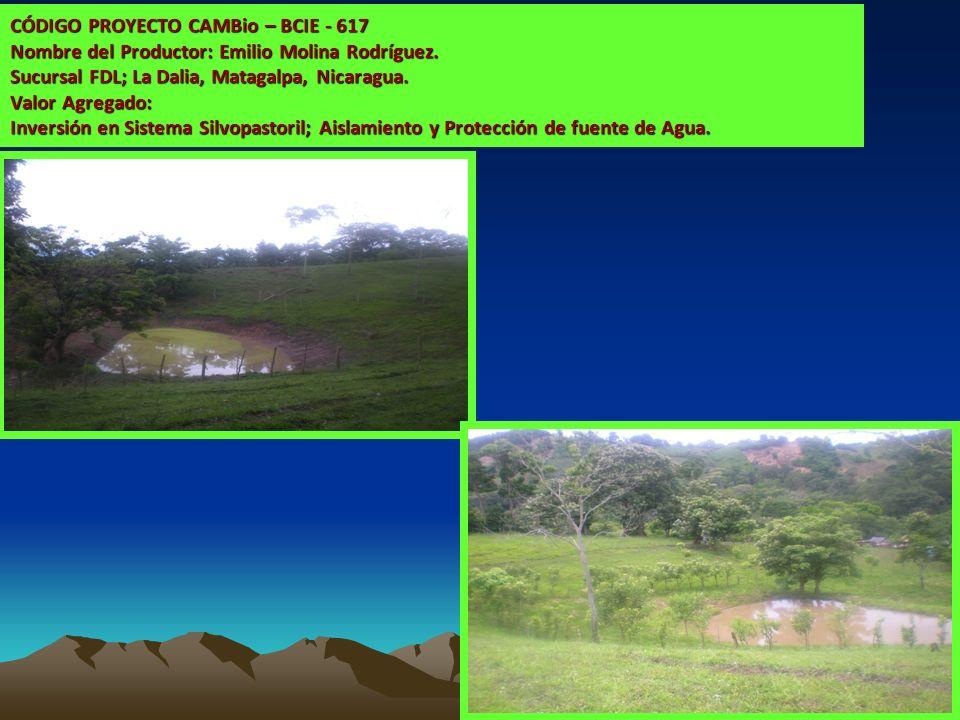 CÓDIGO PROYECTO CAMBio – BCIE - 617 Nombre del Productor: Emilio Molina Rodríguez. Sucursal FDL; La Dalia, Matagalpa, Nicaragua. Valor Agregado: Inver
