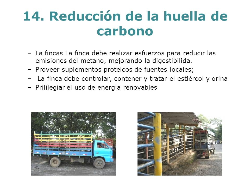 14. Reducción de la huella de carbono –La fincas La finca debe realizar esfuerzos para reducir las emisiones del metano, mejorando la digestibilida. –