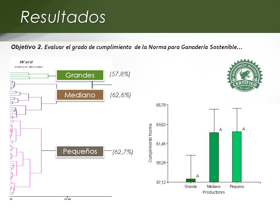 Resultados Objetivo 2. Evaluar el grado de cumplimiento de la Norma para Ganadería Sostenible… Grandes Mediano Pequeños (57,8%) (62,6%) (62,7%)