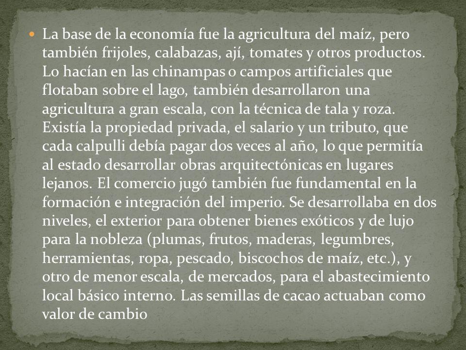 La base de la economía fue la agricultura del maíz, pero también frijoles, calabazas, ají, tomates y otros productos. Lo hacían en las chinampas o cam