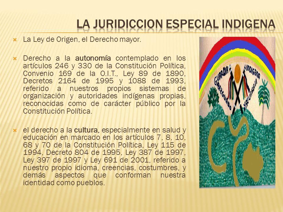 La Ley de Origen, el Derecho mayor. Derecho a la autonomía contemplado en los artículos 246 y 330 de la Constitución Política, Convenio 169 de la O.I.