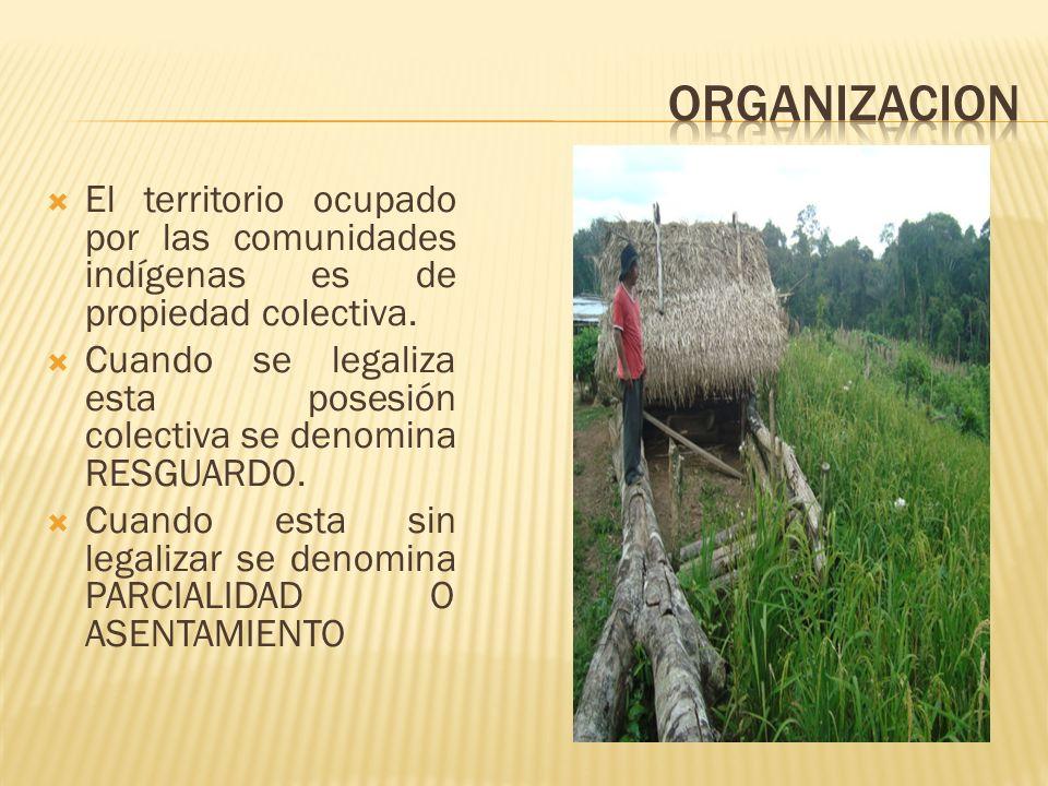 El territorio ocupado por las comunidades indígenas es de propiedad colectiva. Cuando se legaliza esta posesión colectiva se denomina RESGUARDO. Cuand