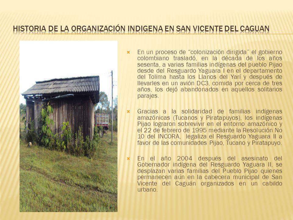 En un proceso de colonización dirigida el gobierno colombiano trasladó, en la década de los años sesenta, a varias familias indígenas del pueblo Pijao