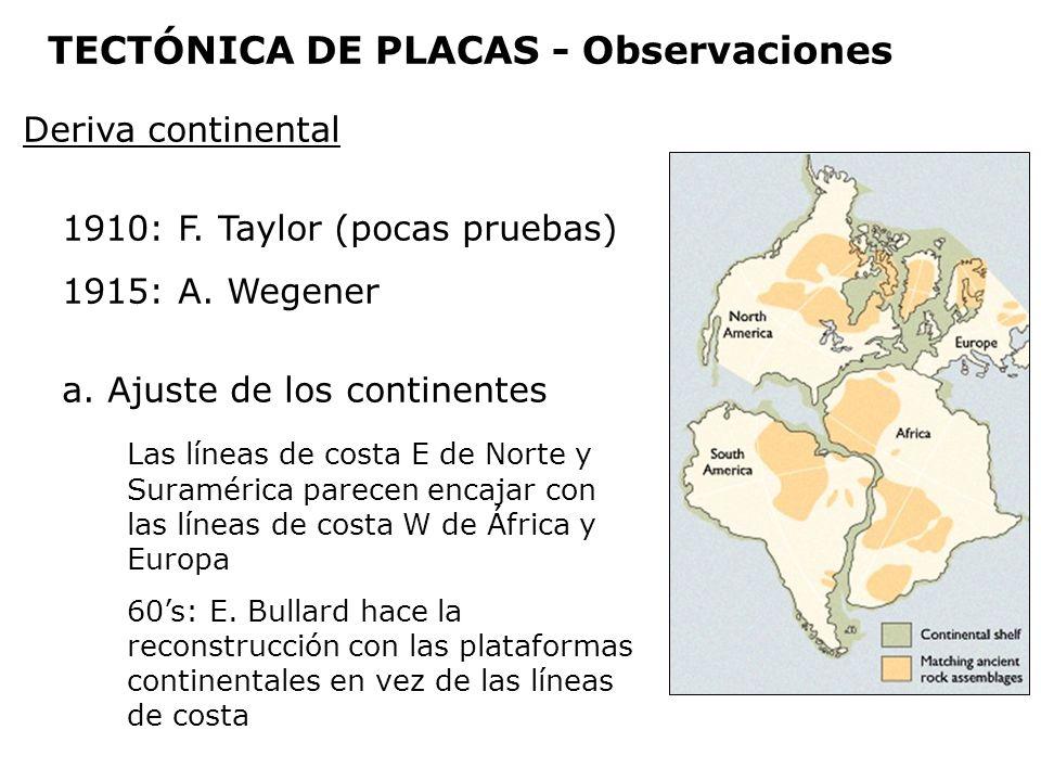 Deriva continental 1910: F. Taylor (pocas pruebas) 1915: A. Wegener a. Ajuste de los continentes Las líneas de costa E de Norte y Suramérica parecen e