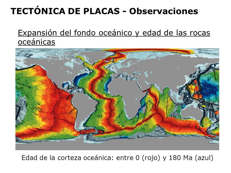 Edad de la corteza oceánica: entre 0 (rojo) y 180 Ma (azul) Expansión del fondo oceánico y edad de las rocas oceánicas TECTÓNICA DE PLACAS - Observaci