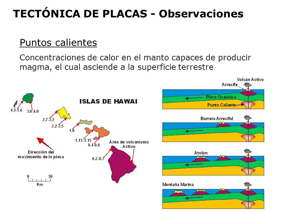 Puntos calientes Concentraciones de calor en el manto capaces de producir magma, el cual asciende a la superficie terrestre TECTÓNICA DE PLACAS - Obse