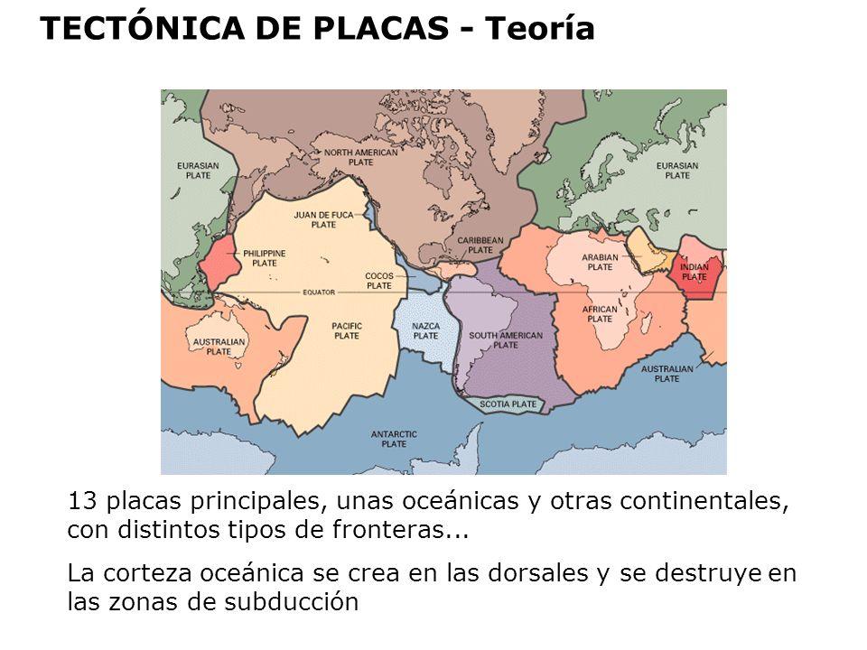 13 placas principales, unas oceánicas y otras continentales, con distintos tipos de fronteras... La corteza oceánica se crea en las dorsales y se dest