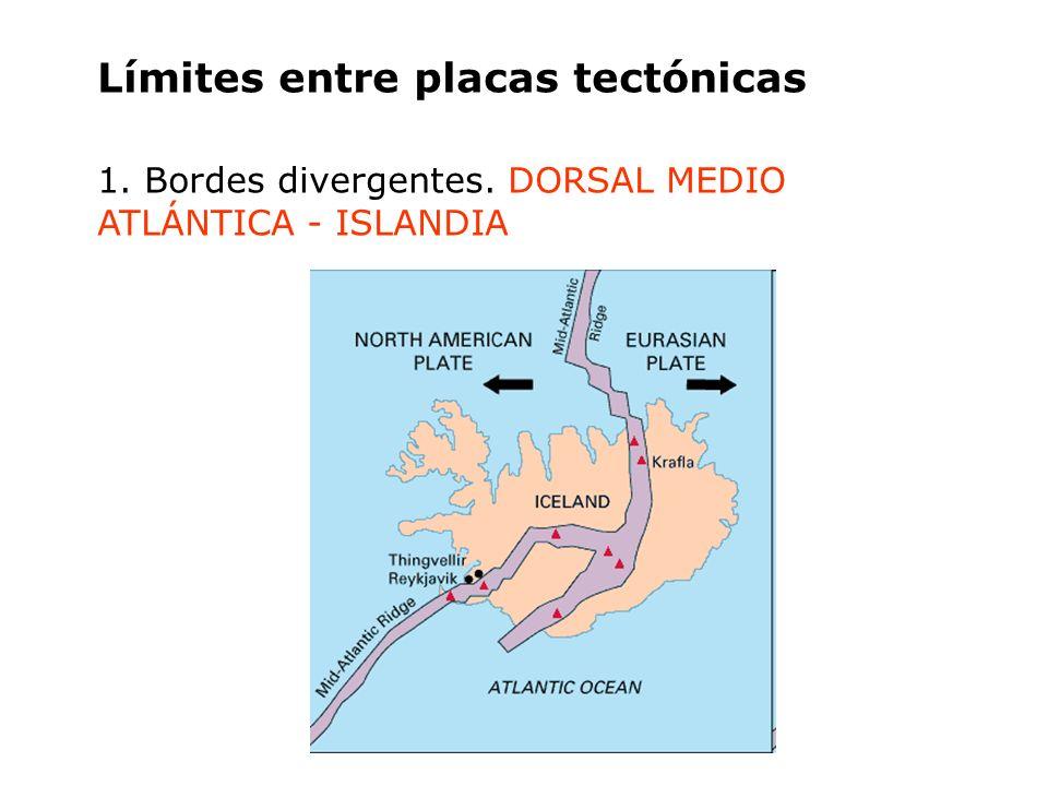Límites entre placas tectónicas 1. Bordes divergentes. DORSAL MEDIO ATLÁNTICA - ISLANDIA