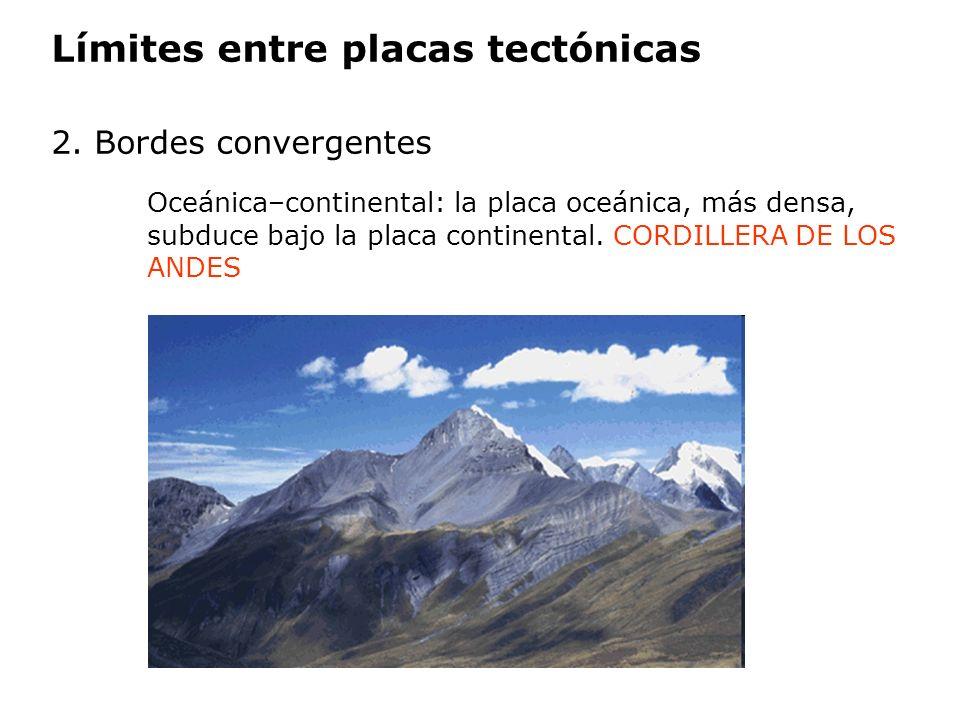 Límites entre placas tectónicas 2. Bordes convergentes Oceánica–continental: la placa oceánica, más densa, subduce bajo la placa continental. CORDILLE