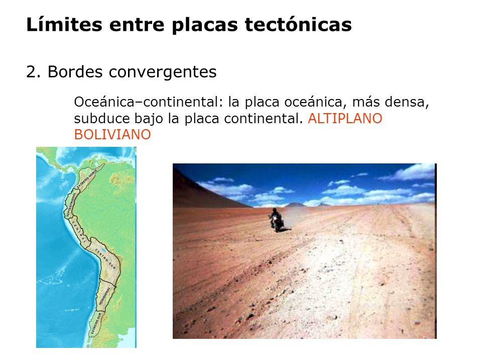Límites entre placas tectónicas 2. Bordes convergentes Oceánica–continental: la placa oceánica, más densa, subduce bajo la placa continental. ALTIPLAN
