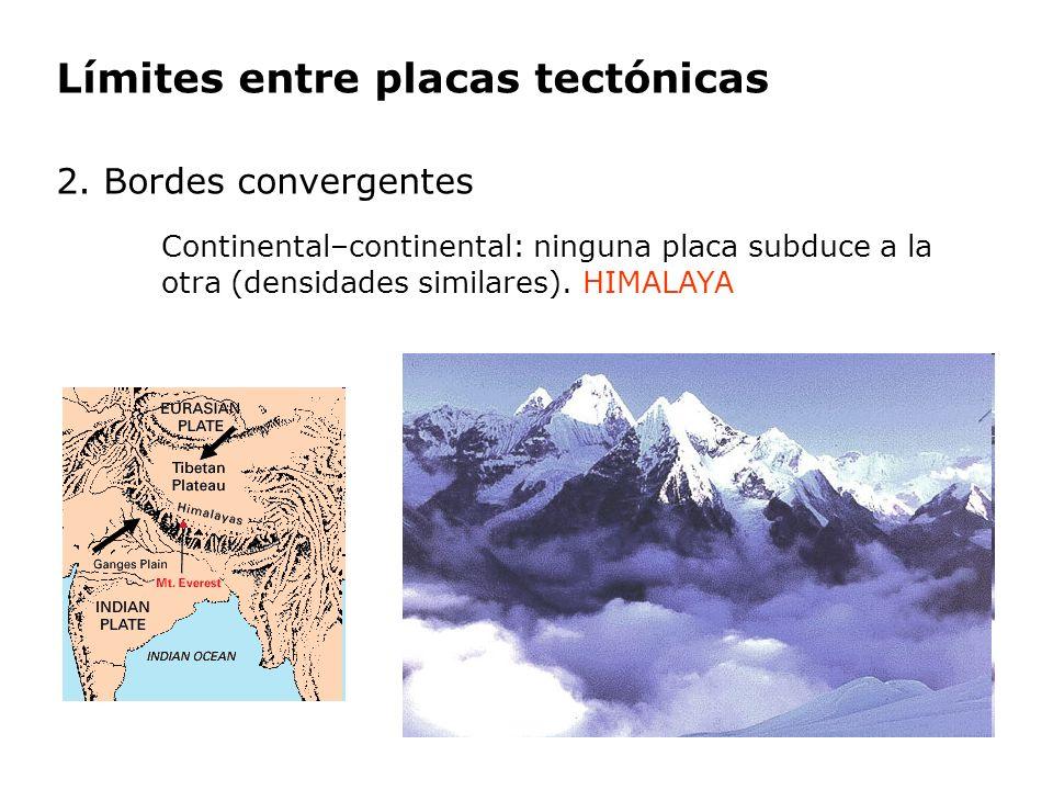 Límites entre placas tectónicas 2. Bordes convergentes Continental–continental: ninguna placa subduce a la otra (densidades similares). HIMALAYA