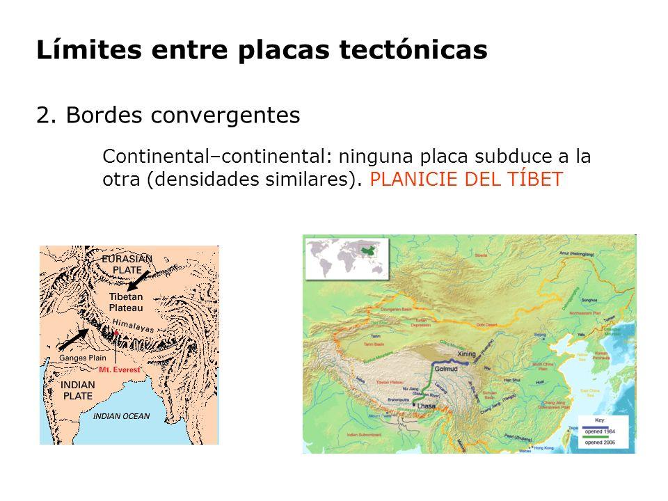 Límites entre placas tectónicas 2. Bordes convergentes Continental–continental: ninguna placa subduce a la otra (densidades similares). PLANICIE DEL T