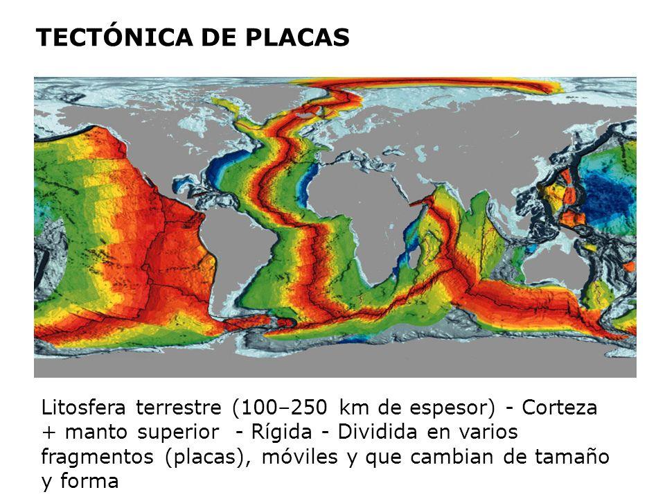 TECTÓNICA DE PLACAS Litosfera terrestre (100–250 km de espesor) - Corteza + manto superior - Rígida - Dividida en varios fragmentos (placas), móviles