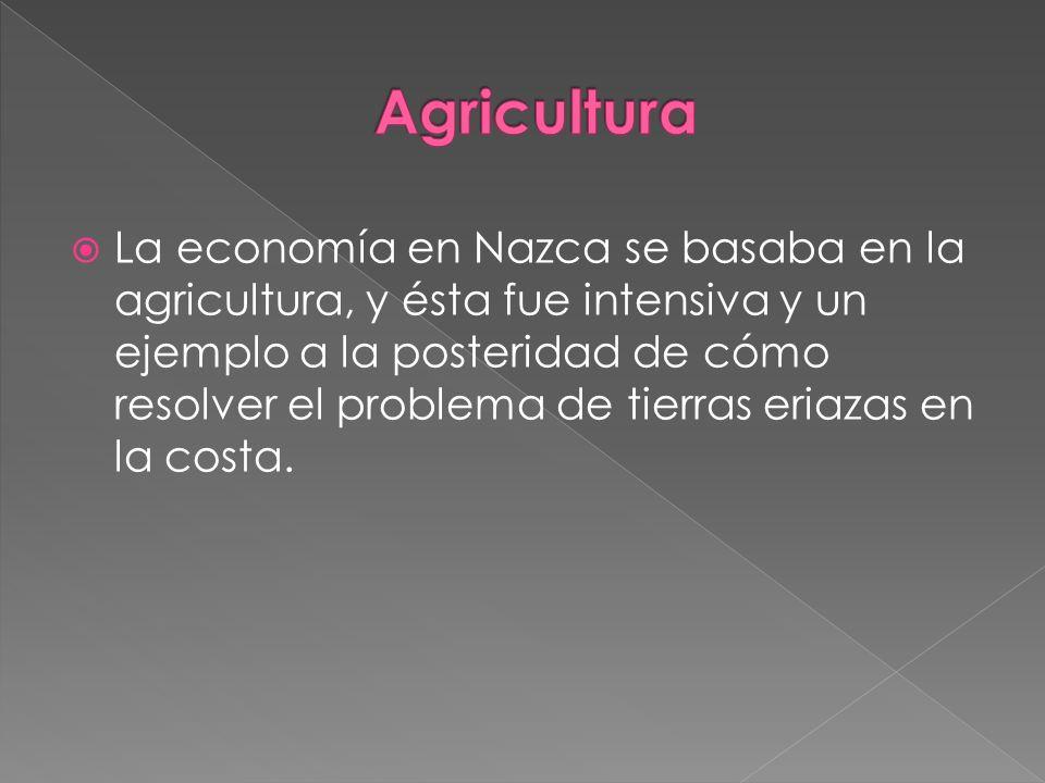 La economía en Nazca se basaba en la agricultura, y ésta fue intensiva y un ejemplo a la posteridad de cómo resolver el problema de tierras eriazas en