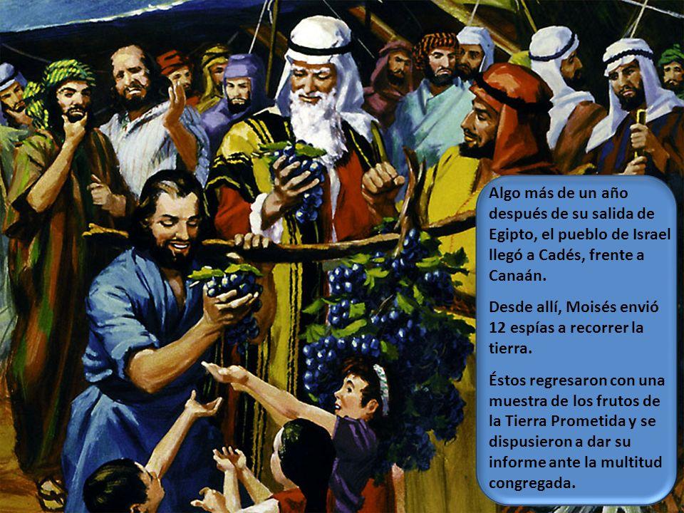 Algo más de un año después de su salida de Egipto, el pueblo de Israel llegó a Cadés, frente a Canaán. Desde allí, Moisés envió 12 espías a recorrer l