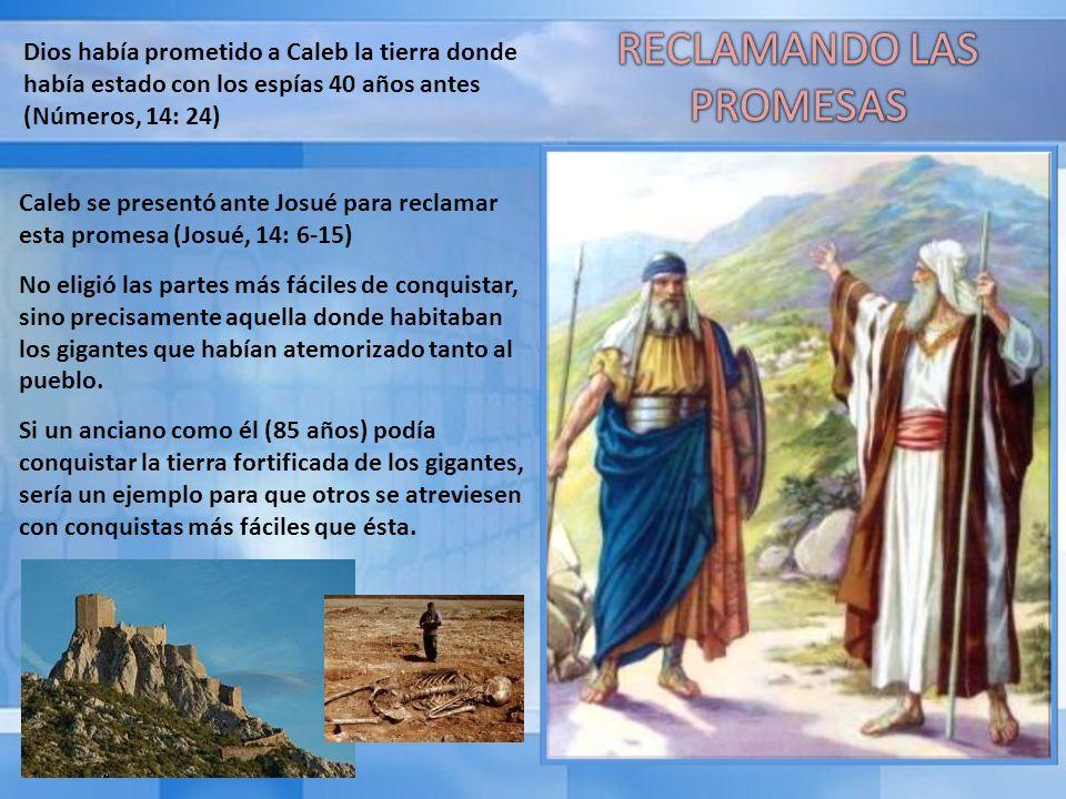 Dios había prometido a Caleb la tierra donde había estado con los espías 40 años antes (Números, 14: 24) Caleb se presentó ante Josué para reclamar es