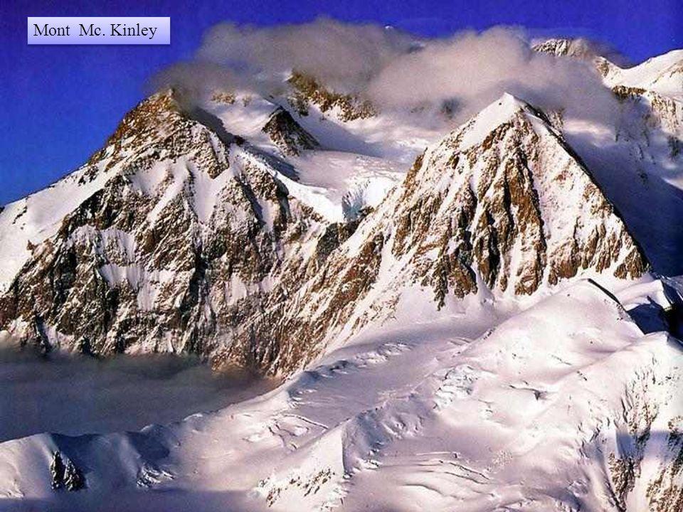 Met zijn hoogte van 6.500 m is de berg McKinley de hoogste top van Noord- Amerika. Hij domineert de besneeuwde vlakten en de toendra van het Nationaal