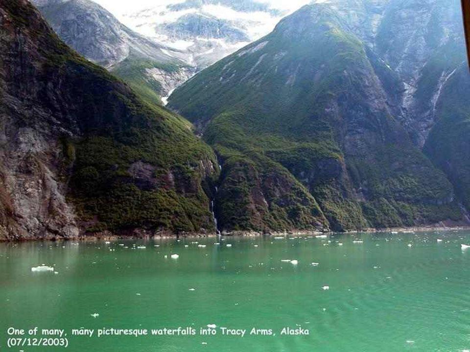 Van de 3.000 waterlopen die Alaska doorkruisen is de Yukon de bekendste. Hij slingert zich majestatisch 2.000 km ver, van de Canadese grens tot aan de