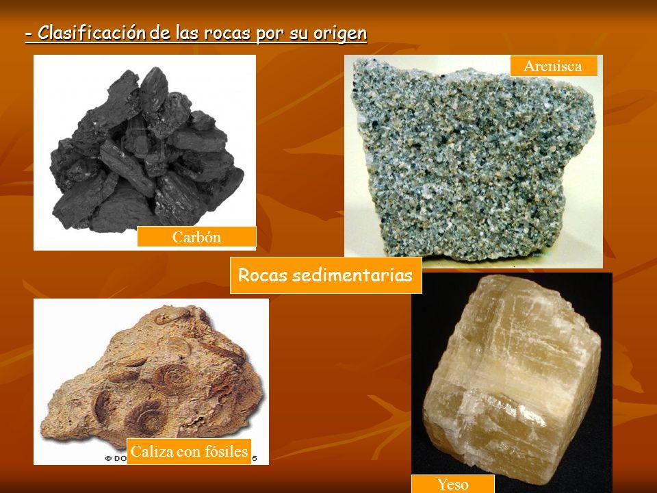 - Clasificación de las rocas por su origen Rocas sedimentarias Caliza con fósiles Carbón Arenisca Yeso
