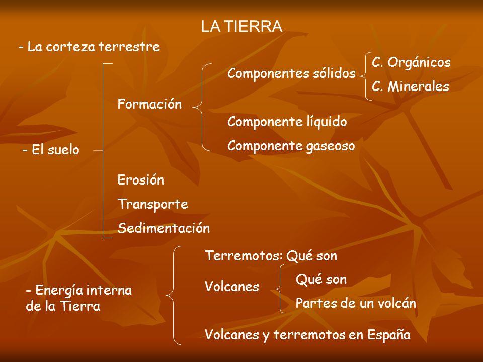 LA TIERRA - La corteza terrestre - El suelo Formación Componentes sólidos Componente líquido Componente gaseoso C. Orgánicos C. Minerales Erosión Tran