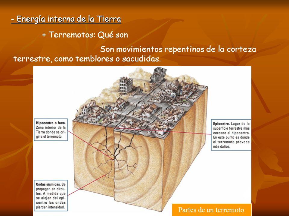 + Terremotos: Qué son Son movimientos repentinos de la corteza terrestre, como temblores o sacudidas. - Energía interna de la Tierra Partes de un terr