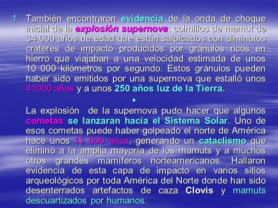 1.También encontraron evidencia de la onda de choque inicial de la explosión supernova: colmillos de mamut de 34 000 años de edad que están salpicados