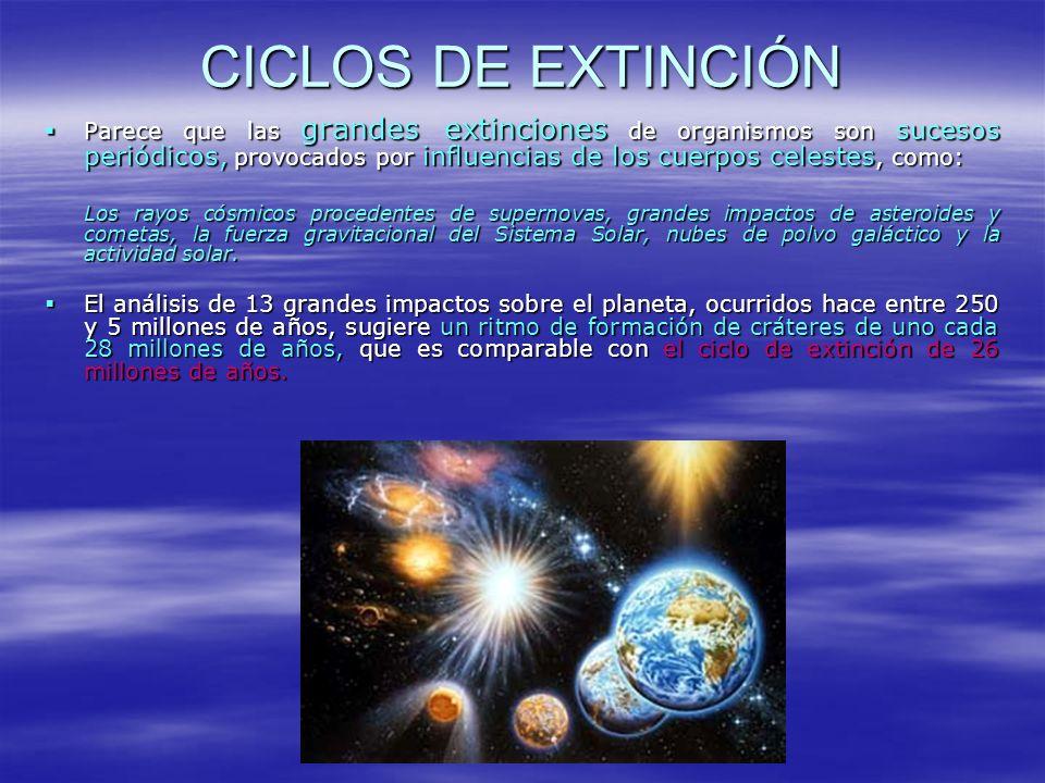 CICLOS DE EXTINCIÓN Parece que las grandes extinciones de organismos son sucesos periódicos, provocados por influencias de los cuerpos celestes, como: