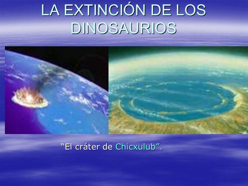 LA EXTINCIÓN DE LOS DINOSAURIOS La península del Yucatán, en México, recibió el impacto hace ahora 65 millones de años de un meteorito que provocó la