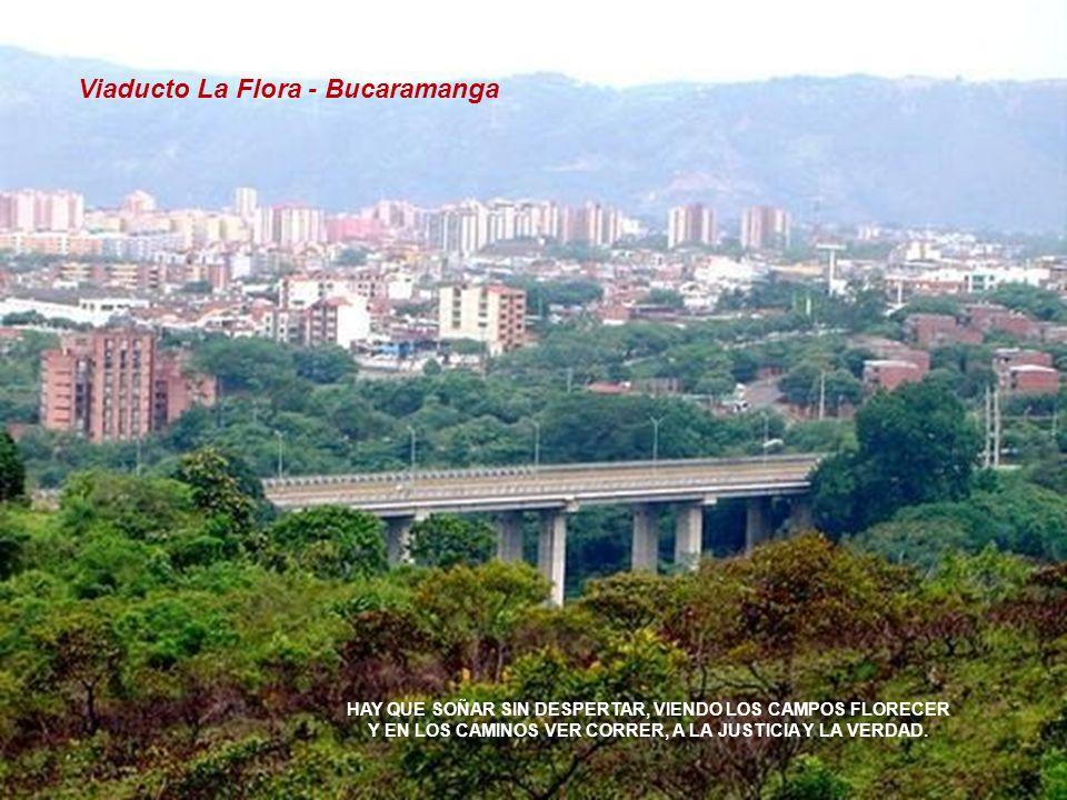 Viaducto La Flora - Bucaramanga HAY QUE SOÑAR SIN DESPERTAR, VIENDO LOS CAMPOS FLORECER Y EN LOS CAMINOS VER CORRER, A LA JUSTICIA Y LA VERDAD.