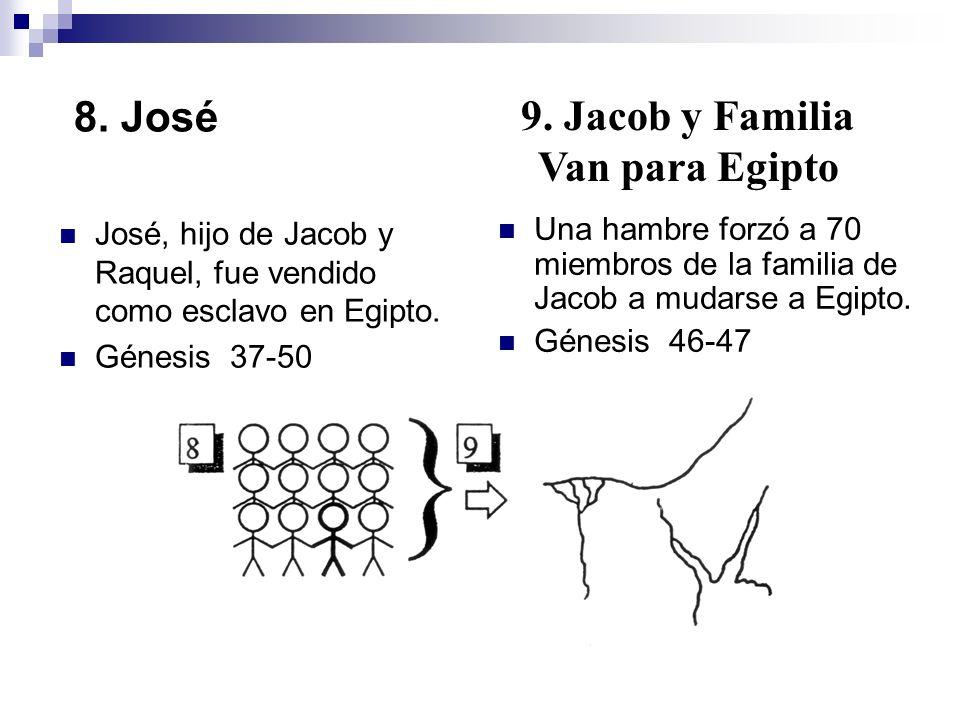 8. José José, hijo de Jacob y Raquel, fue vendido como esclavo en Egipto. Génesis 37-50 Una hambre forzó a 70 miembros de la familia de Jacob a mudars