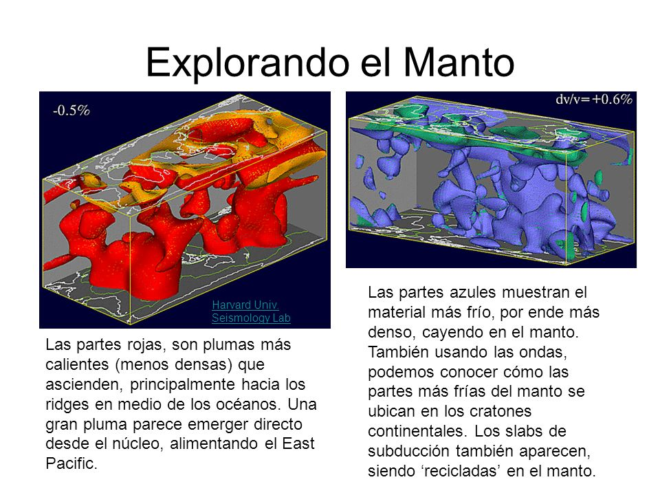 Explorando el Manto Las partes azules muestran el material más frío, por ende más denso, cayendo en el manto. También usando las ondas, podemos conoce